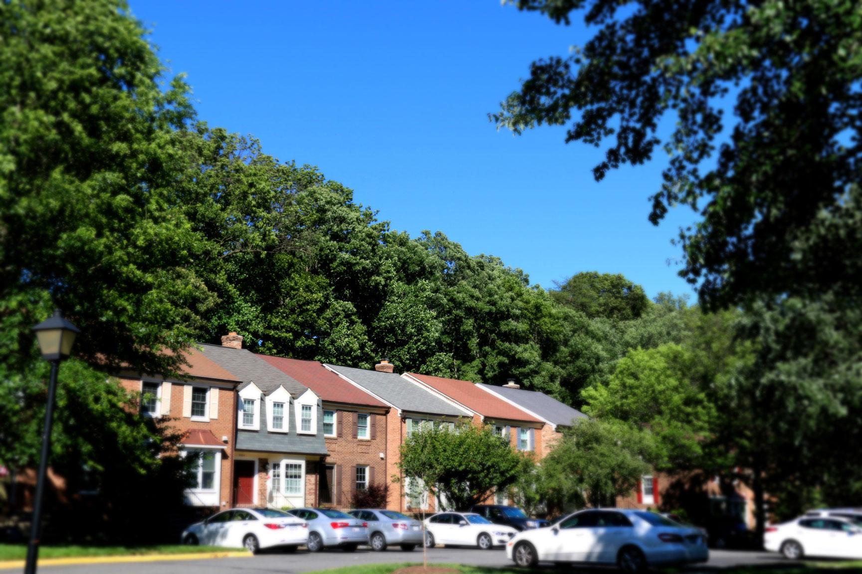 image of the neighborhood